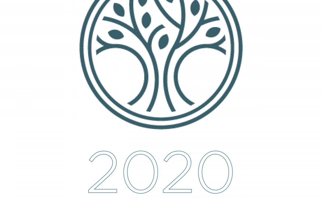 Church Council 2020 Annual Report now available online